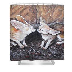 Fennec Love Shower Curtain by Patricia Lintner