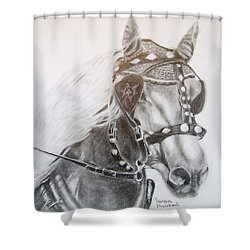 Fer A Cheval Shower Curtain