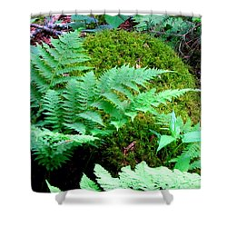 Fern And Moss Shower Curtain