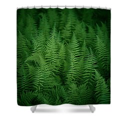 Fern Bed Shower Curtain