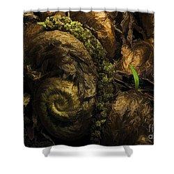 Fern Headdress Shower Curtain by Jean OKeeffe Macro Abundance Art
