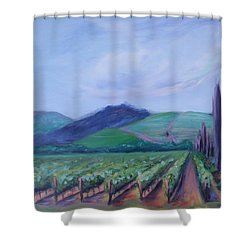 Ferrari Carano Vineyard Shower Curtain by Donna Tuten