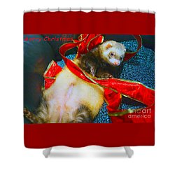 Shower Curtain featuring the photograph Ferrety Christmas IIi by Cassandra Buckley