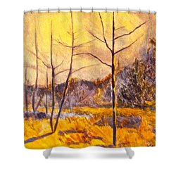 Ferrum Shower Curtain by Kendall Kessler