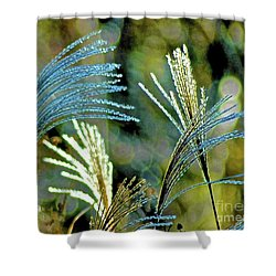Fetching Shower Curtain