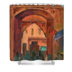 Fez Town Scene Shower Curtain