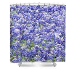 Field Of Bluebonnets Shower Curtain by Kathy Churchman