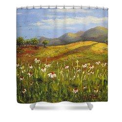 Field Of Daisies Shower Curtain by Dottie Kinn