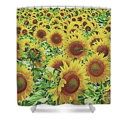 Field Of Dreams Shower Curtain by Robert ONeil
