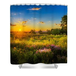 Field Of Flowers Sunset Shower Curtain by Mark Goodman
