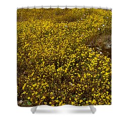 Field Of Goldfields In Park Sierra-ca Shower Curtain by Ruth Hager