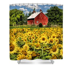 Field Of Sunflowers Shower Curtain by Christopher Arndt