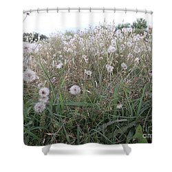 Field Of Youthful Dreams Shower Curtain by Joseph Baril