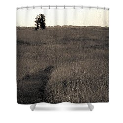 Field Ways Shower Curtain by Yevgeni Kacnelson