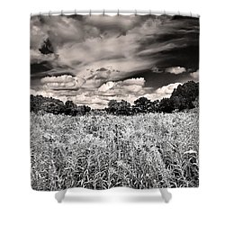 Fields Of Gold And Clouds Shower Curtain by Mitchell R Grosky