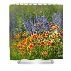 Fields Of Lavender And Orange Blanket Flowers Shower Curtain by Lingfai Leung