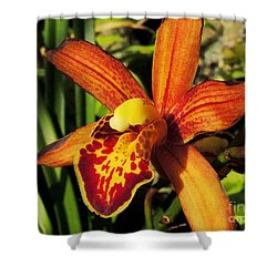 Fiery Orchid Shower Curtain