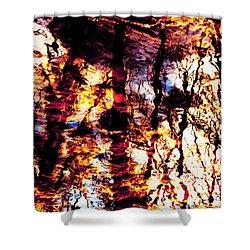 Fiery Reflections Shower Curtain by Shawna Rowe
