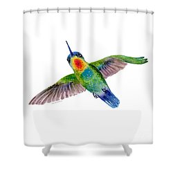 Fiery-throated Hummingbird Shower Curtain