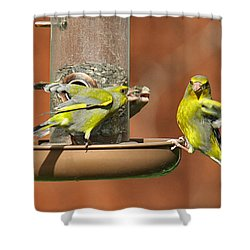 Fight For Food Shower Curtain