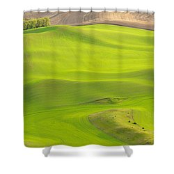 Fileds Of The Palouse Shower Curtain