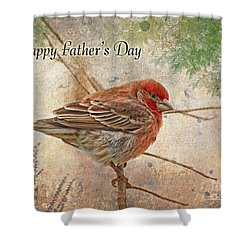 Finch Greeting Card Father's Day Shower Curtain