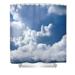 Shower Curtain featuring the photograph Find Teddy by Jeanette C Landstrom