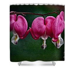 Find Your Heart Shower Curtain by Mary Machare