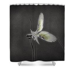 Fine Balancing Act Shower Curtain by Douglas Barnard