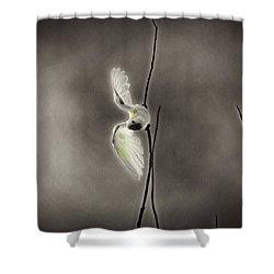 Fine Balancing Act V2 Shower Curtain by Douglas Barnard
