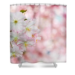 Finest Spring Time Shower Curtain by Hannes Cmarits