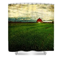 Finished Shower Curtain by Lois Bryan