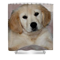 Fiona Shower Curtain by Debbie Hart