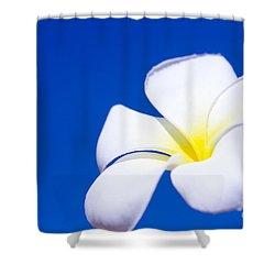 Fiore Nel Cielo - The Blue Dream Of Sky Shower Curtain by Sharon Mau