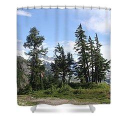 Fir Trees At Mount Baker Shower Curtain by Tom Janca
