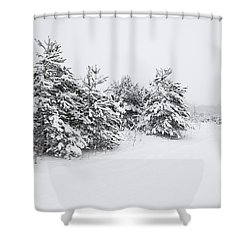 Fir Trees Covered By Snow Shower Curtain