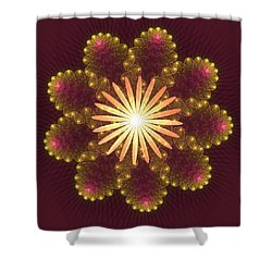 Fire Flower Mandala Shower Curtain