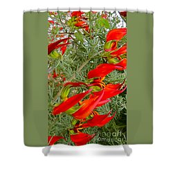 Fire Flowers Shower Curtain