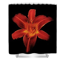 Fire Lily Shower Curtain by Michael Porchik