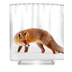 Fire 'n Ice Shower Curtain by Roeselien Raimond