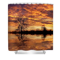 Fire Painters In The Sky Shower Curtain by Bill Pevlor
