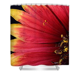 Shower Curtain featuring the photograph Fire Spokes by Paul Rebmann