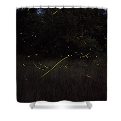 Firefly Traces On A Summer Night Shower Curtain