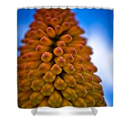 Firepoker Shower Curtain