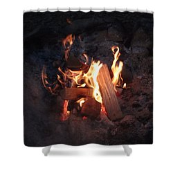 Fireside Seat Shower Curtain by Michael Porchik