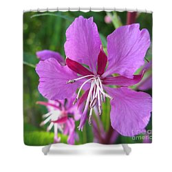 Fireweed 1 Shower Curtain by Martin Howard