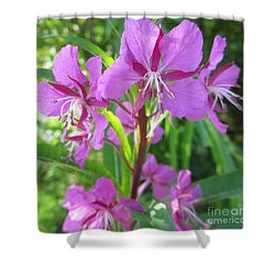 Fireweed 3 Shower Curtain by Martin Howard