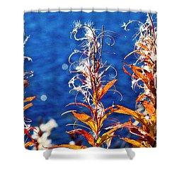 Fireweed Flower Shower Curtain by Heiko Koehrer-Wagner