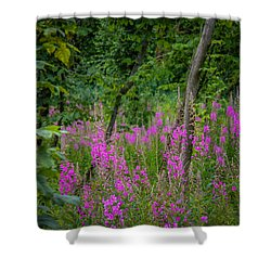 Fireweed In The Irish Countryside Shower Curtain