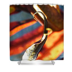 Fireweed Number 4 Shower Curtain by Brian Boyle